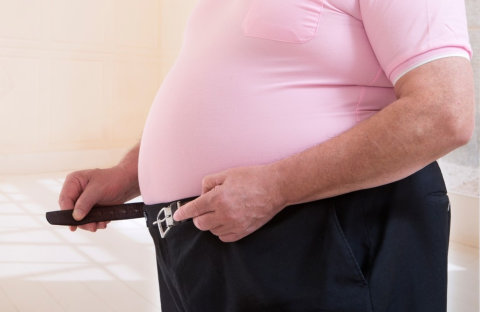 Obesity May Cause Diabetes and Other Health Issues